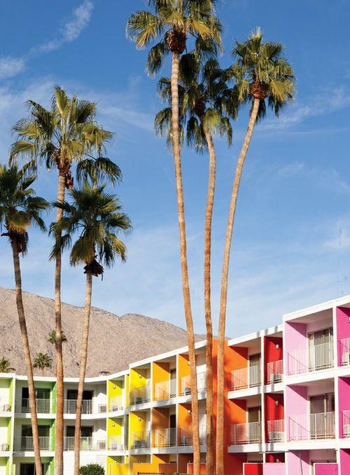 Saguaro Hotel_palm springs